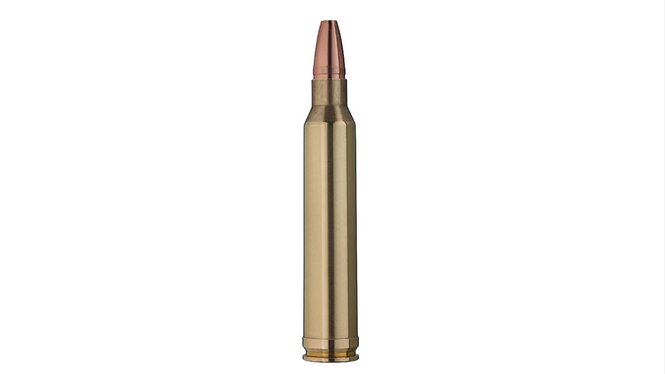 Single bullet view of GECO .300 Win. Mag. STAR 10,7g