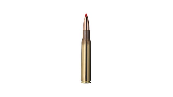 Single bullet view of GECO .30-06 EXPRESS 10,7g