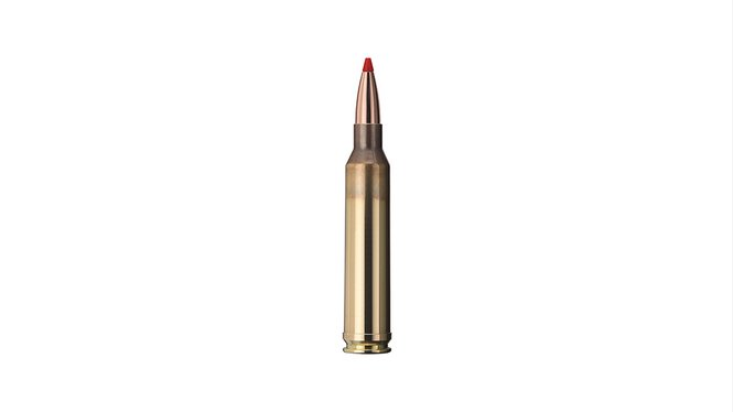 Single bullet view of GECO 7mm Rem. Mag. Express 10,0g